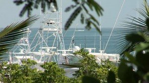 Harbour Inn Bed and Breakfast in Key West